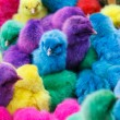 Color chicken — Stock Photo