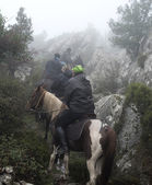 People horse ridding in a misty forest — Stock Photo