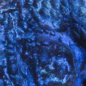 Macro of an Electric Blue Hap skin, Sciaenochromis ahli — Stock Photo
