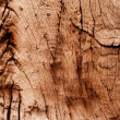 Abstract texture of dry and old wood — Stock Photo