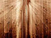 Wooden background in sunbeams — Stock Photo