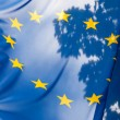 European union flag against sky and leaves — Stock Photo #14294071