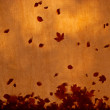 Autumn leaves on the canvas roof in  sunshine - Stock Photo