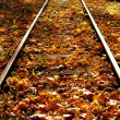 Autumn leaves on the railway — Stock Photo