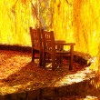 Stock Photo: Wooden chairs in the autumn park