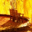 Wooden chairs in the autumn park — Stock Photo
