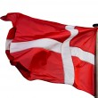 Danish flag in the wind on white background — Stock Photo