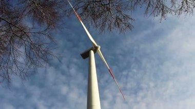Ветротурбины против ветви деревьев и голубое небо — Стоковое видео