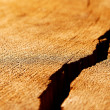 Stock Photo: Crack on wooden surface