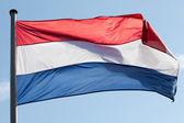 在对天空风中荷兰国旗 — 图库照片