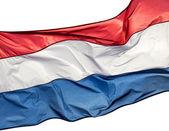 Vlag van holland tegen op witte backgrond — Stockfoto