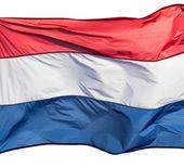 片段国旗的白色背景上的荷兰 — 图库照片