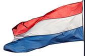 Nederlandse vlag in de wind op witte achtergrond — Stockfoto