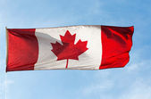 Canadian Flag in the wind against a sky — Stok fotoğraf