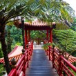 Tropical garden in the Japanese style — Stock Photo