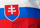 Flag of Slovakia in sunlight close-up — Stock Photo