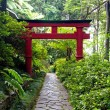 Japanese Torii gate and the stone pathway in  Zen garden — Stock Photo