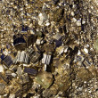 Crystals of pyrite close up — Stock Photo