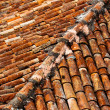 Stock Photo: Old shingles on roof