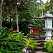 Stone stairs in Japanese tropical garden — Stock Photo