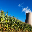 Green corn field against nuclear power plant — Stockfoto #31833321