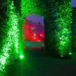 light show in night park in bad pyrmont — Stock Photo