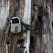Lock and chain on old wooden door — Stock Photo