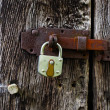 The metal lock on a  old wooden door — Stock Photo