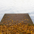 Wooden pier on pond and autumn leaves — Stock Photo