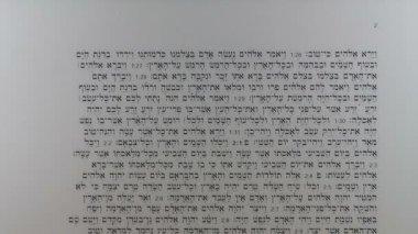 Hebrew text of Torah — Stock Video