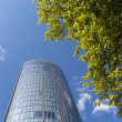 Green tree branches against the skyscraper and blue sky — Stock Photo #45692723