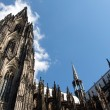 Cologne Cathedral against the blue sky in Germany — Stock Photo