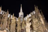 Kölner dom gegen schwarzen nachthimmel — Stockfoto