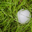 Royalty-Free Stock Photo: Golf Ball in the rough