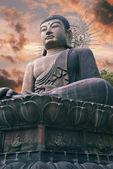 佛陀在韩国的巨型雕像 — 图库照片