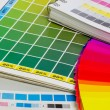 Stock Photo: Color guide and color fan