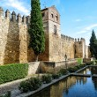 Ancient town wall of Cordoba in Spain — Stock Photo