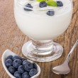 Fresh creamy natural yogurt with blueberries — Stock Photo