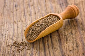 Spice scoop with cumin — Stock Photo