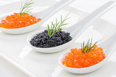 Red and black caviar on porcelain spoons — Stock Photo