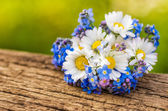 Bouquet with daisies and forget-me-not — Stock Photo