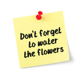 Yellow paper note with text Dont forget to water the flowers — Stock Photo