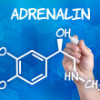 Hand with pen drawing the chemical formula of adrenalin — Stock Photo