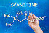 Hand with pen drawing the chemical formula of carnitine — Stock Photo