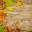 Rustic wooden background with colorful autumn leaves — Stock Photo #36934221