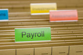 Hanging file folder labeled with Payroll — Stock Photo