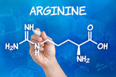 Hand with pen drawing the chemical formula of arginine — Stock Photo