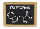 Chemical formula of tryptophan on a blackboard — 图库照片