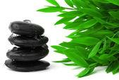 Czarne kamienie i bambusowe listowie — Zdjęcie stockowe