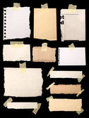 Pieces of notepaper — Stock Photo